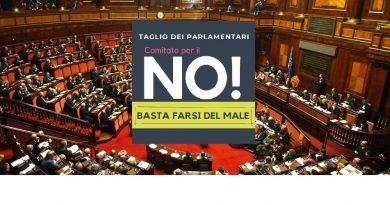 """No al taglio dei parlamentari: è nato il comitato """"basta farsi del male""""."""